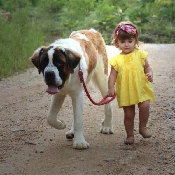 Image result for a girl and her dog