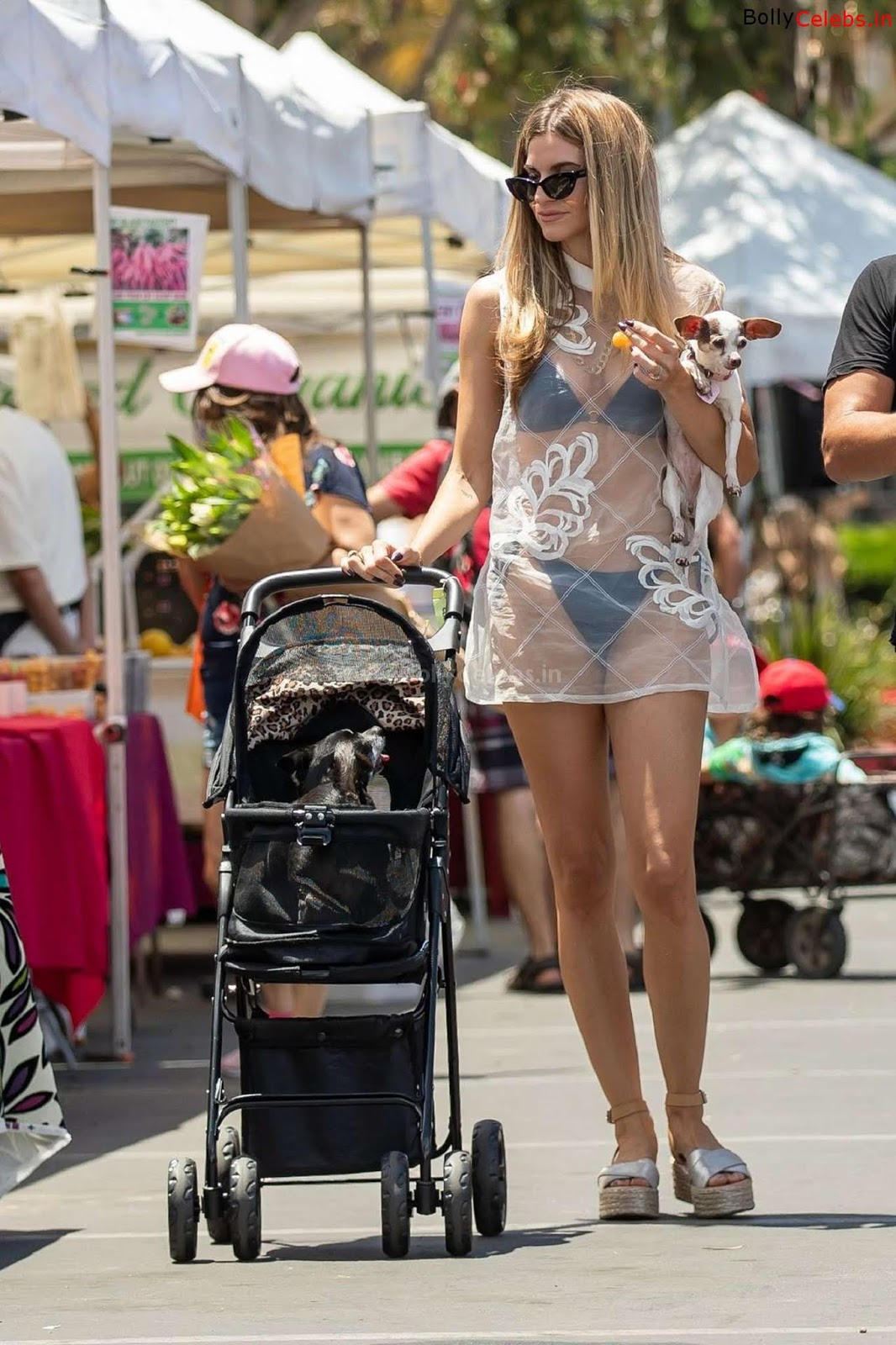 Rachel Mccord Exposing her Bra panties in transparent gown WOW
