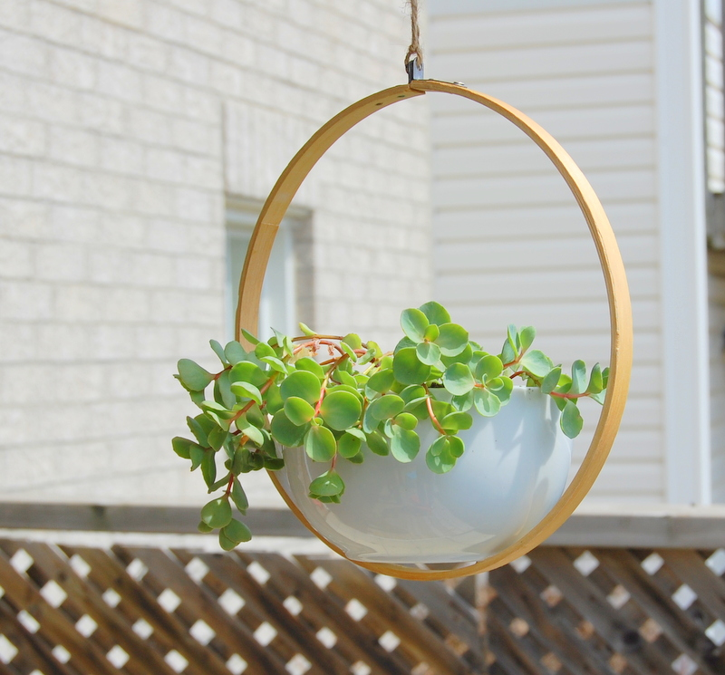 this embroidery hoop planter is a gorgeous modern look and a simple DIY project