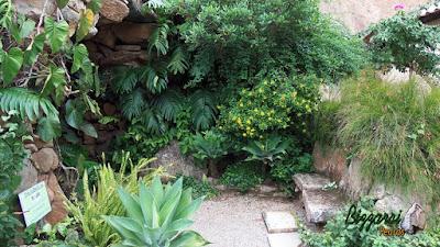 Banco de pedra no jardim, com pedra moledo, com a execução do paisagismo e o piso com pedrisco do rio.