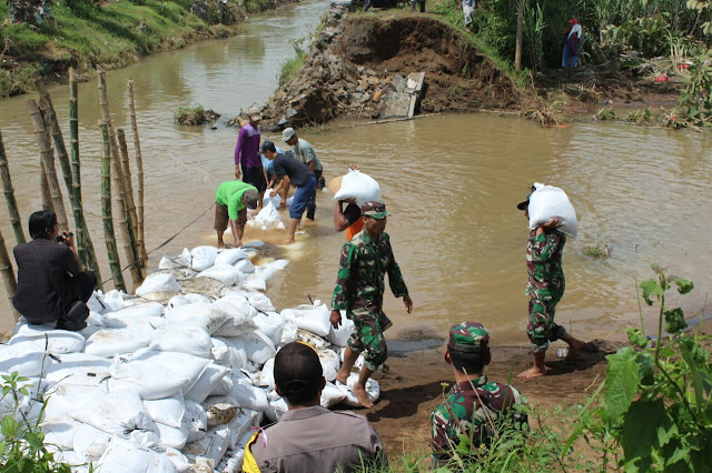 Tanggul Jebol di Kediri Rusak 6 Hektar Tanaman Tebu