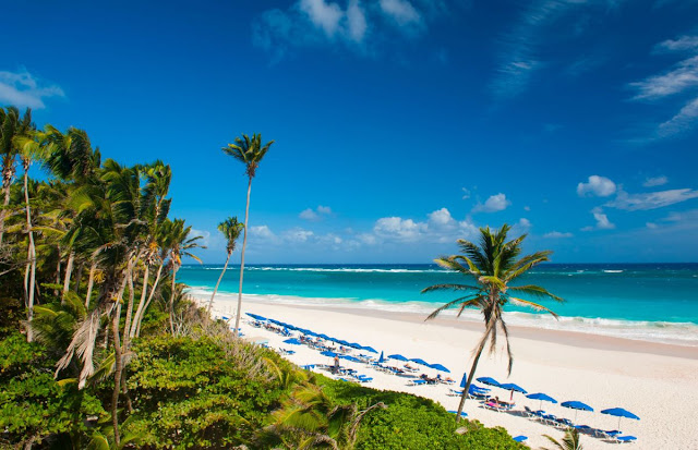 escape to the crane, barbados