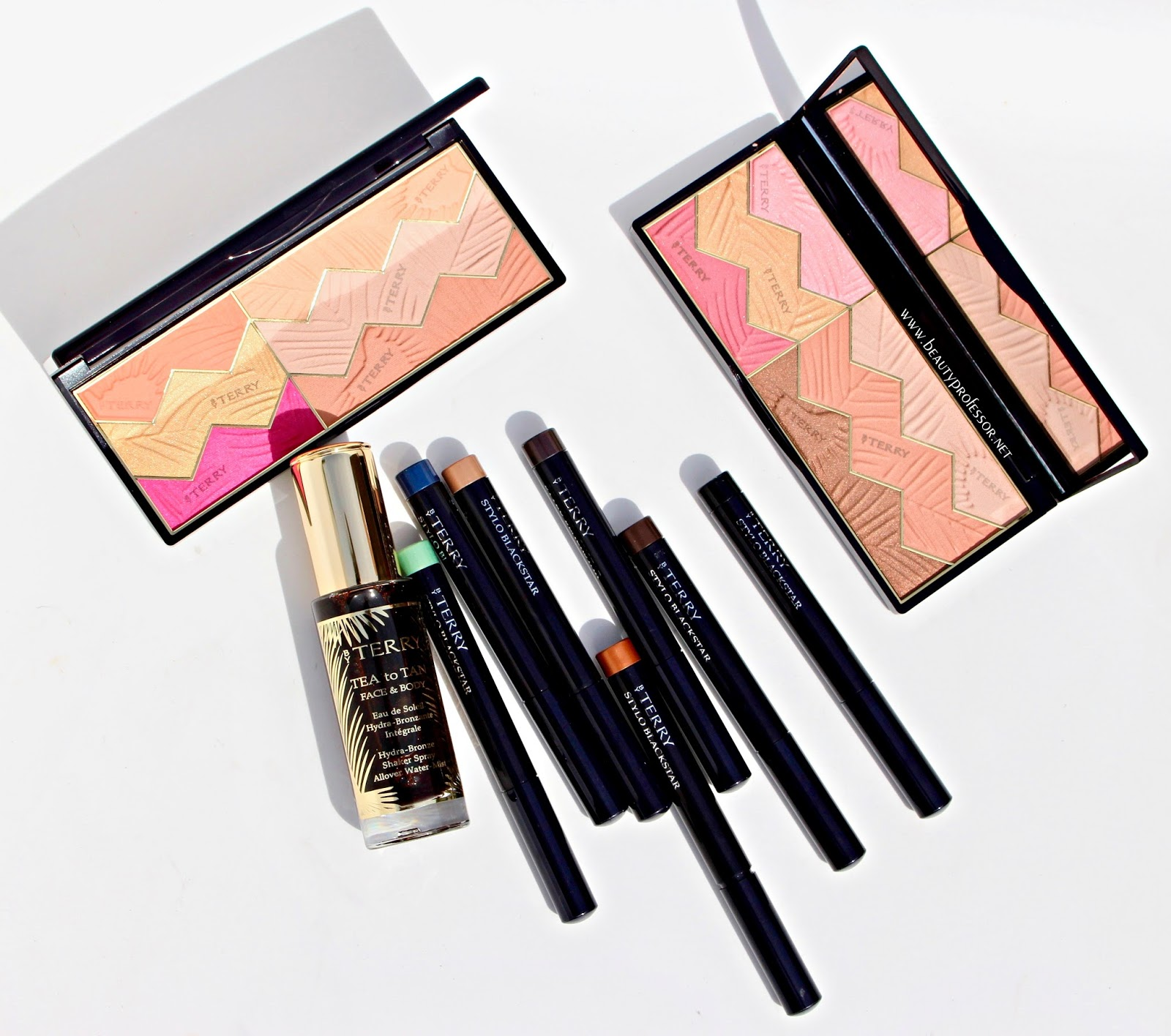 Beauty Professor A Comprehensive Look At The By Terry Tropical