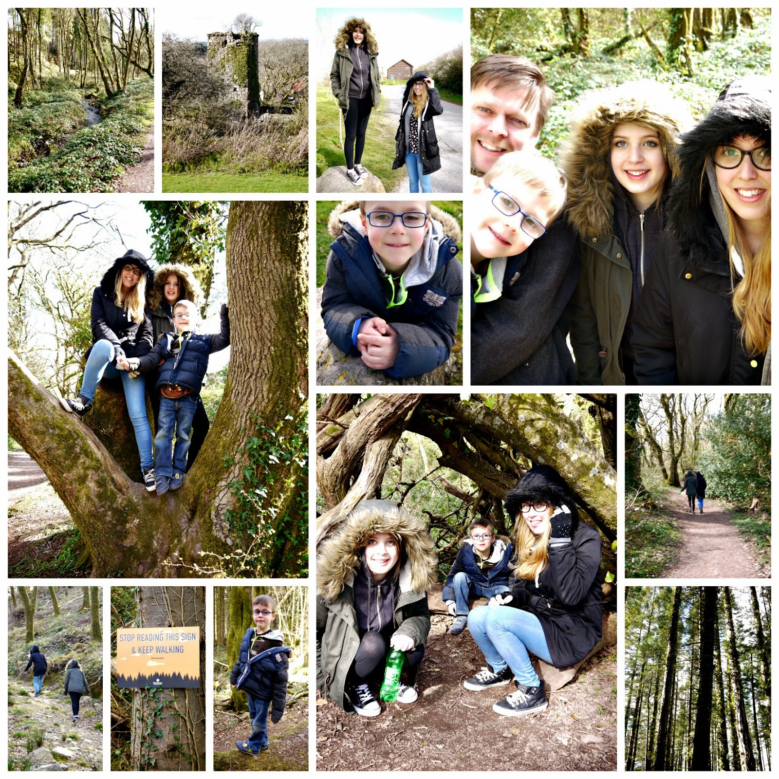 Bluestone, wales, forests, family