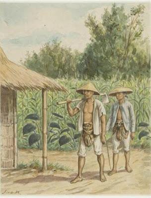 Involusi Pertanian di Pulau Jawa