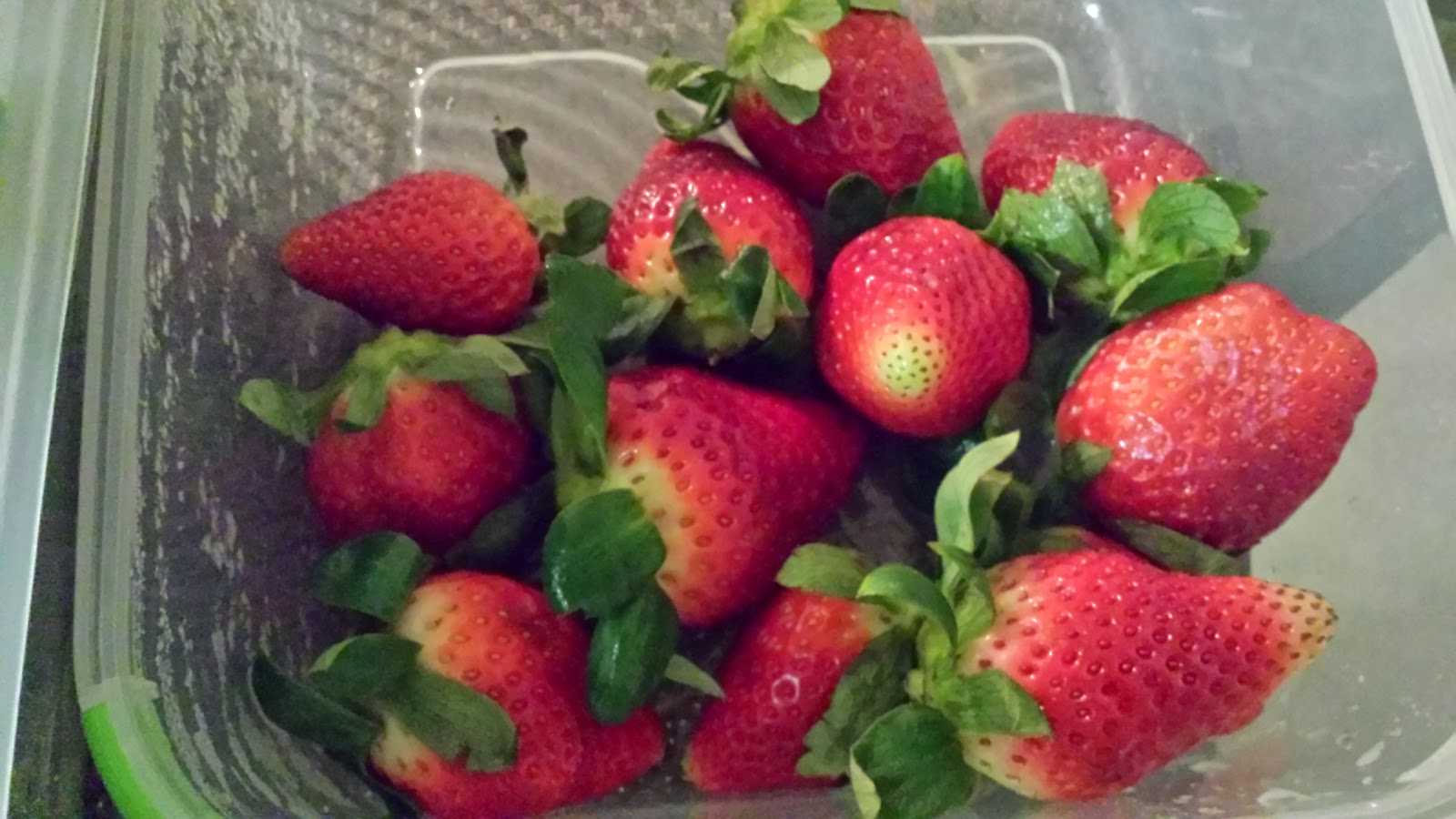 Keep Your Produce Fresh Longer- Ozeri Instavac Food Storage Set Review