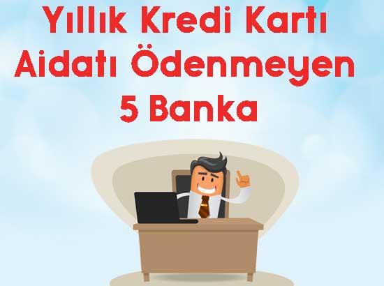 yıllık kredi kartı aidatı ödenmeyen 5 banka