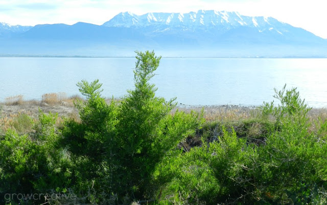 A view from the west side of Utah Lake: growcreativeblog