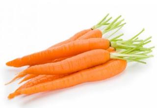 Fakta Unik Si Oranye Yang Jarang Diketahui