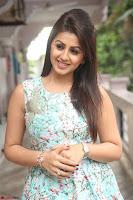 Nikki Galrani at Prema leela pelli gola trailer Launch ~  Exclusive 040.JPG