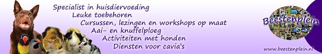 http://beestenplein.nl/
