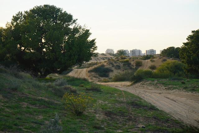 מסלול טיול הדיונה הגדולה באשדוד