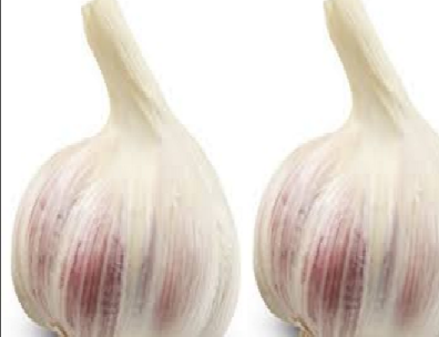 Garlic (lasun) Treat Iron deficiency and Anemia