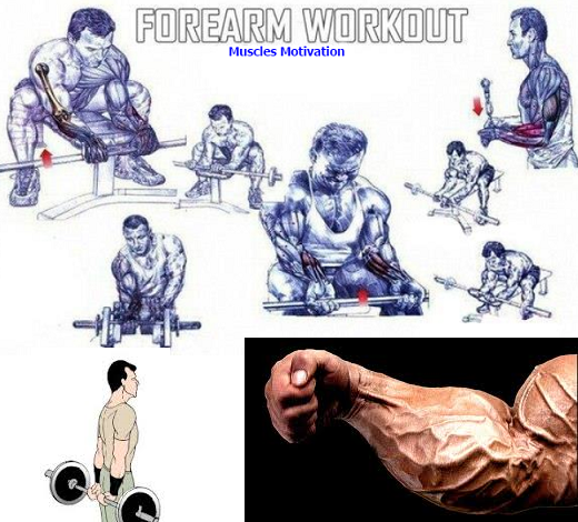 10 Exercises to Maximize Hand, Wrist, and Forearm Strength