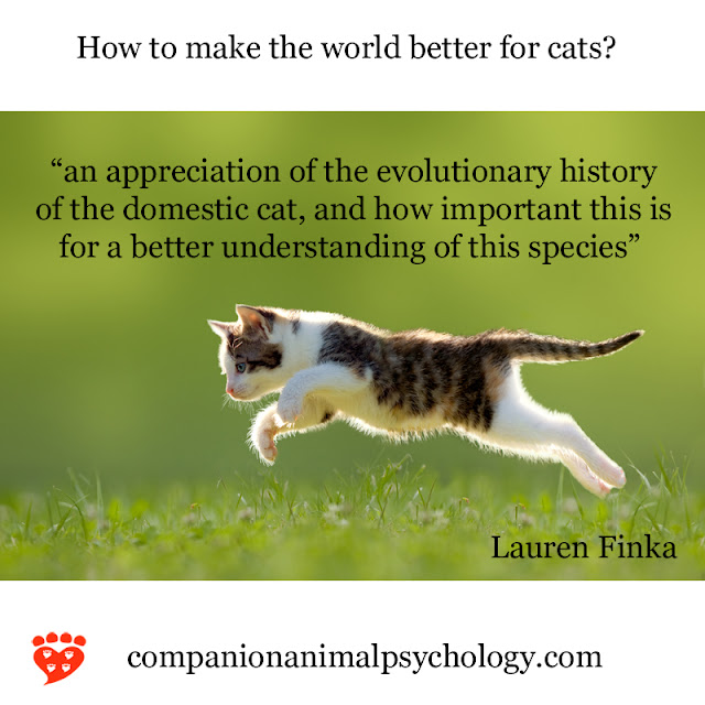 An appreciation of the evolutionary history of cats, like this one pouncing in a meadow, can help us make the world better for cats