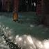 Busa Misterius Muncul Setelah Gempa Besar Jepang