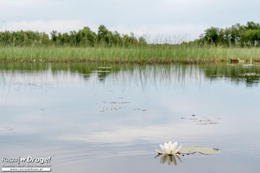 Jezioro Moszne
