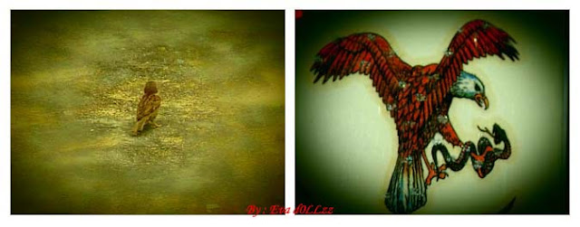 Simple Birds photograph. Creativity - Menggambar - Memotret - Memasak.