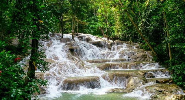 Chute d'eau au milieu d'une foret tropicale