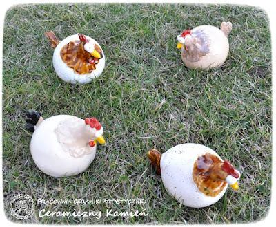 Kury na wypasie