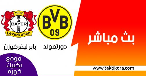 مشاهدة مباراة بوروسيا دورتموند وباير ليفركوزن بث مباشر اليوم في الدوري الالماني