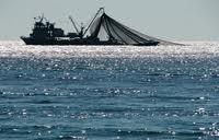 ΕΕ: Επιμένει στην επιδότηση της αλιευτικής βιομηχανίας