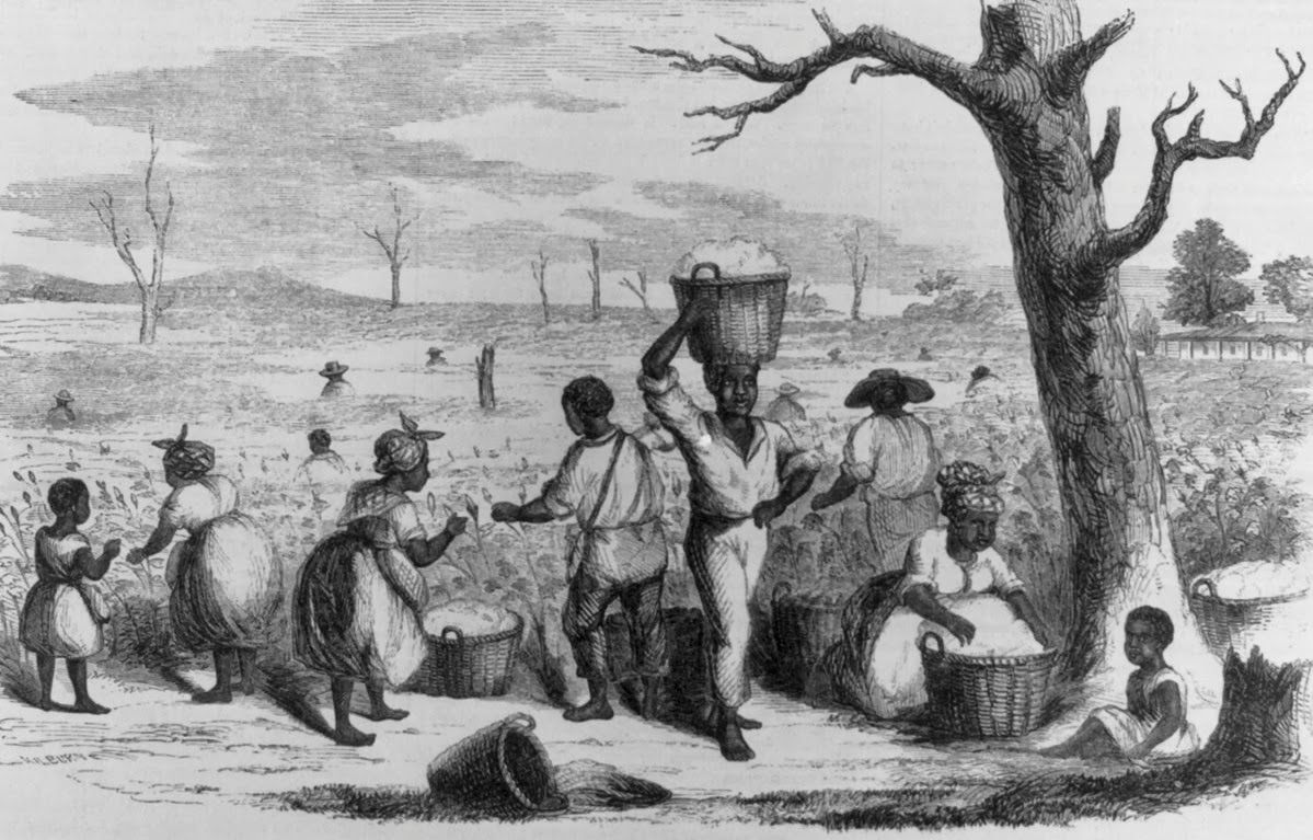 c american women the role of slaves in the th th century 18c american women the role of slaves in the 18th 19th century american economy