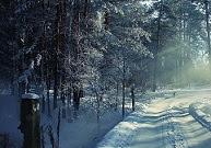 krav på vinterdäck idag