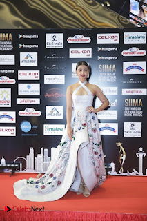 South Indian Celebrities Pictures at SIIMA 2016 DAY 2  0005