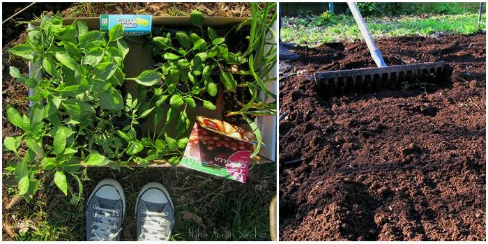fotografía de hortalizas y de una persona arando la tierra