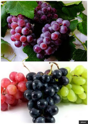 ماذا يحدث لجسدك عندما تأكل العنب كل يوم