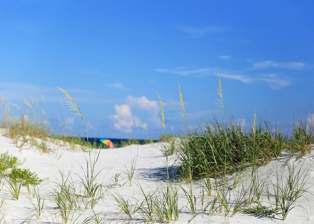 beach_Pensacola_FL_Chicken_Bone_Beach