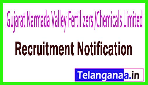 Gujarat Narmada Valley Fertilizers /Chemicals Limited GNFC Recruitment Notification