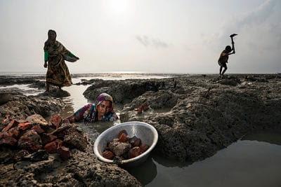 Cómo se ve la supervivencia después del aumento de los océanos