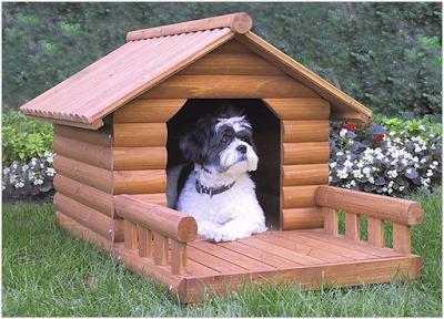 Các loại chuồng chó và nhà cho chó