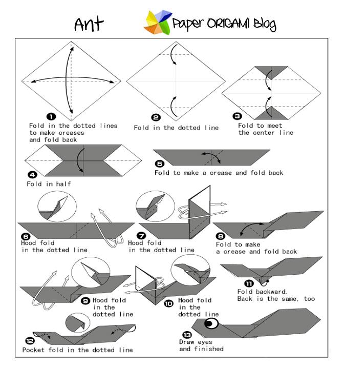 ant origami