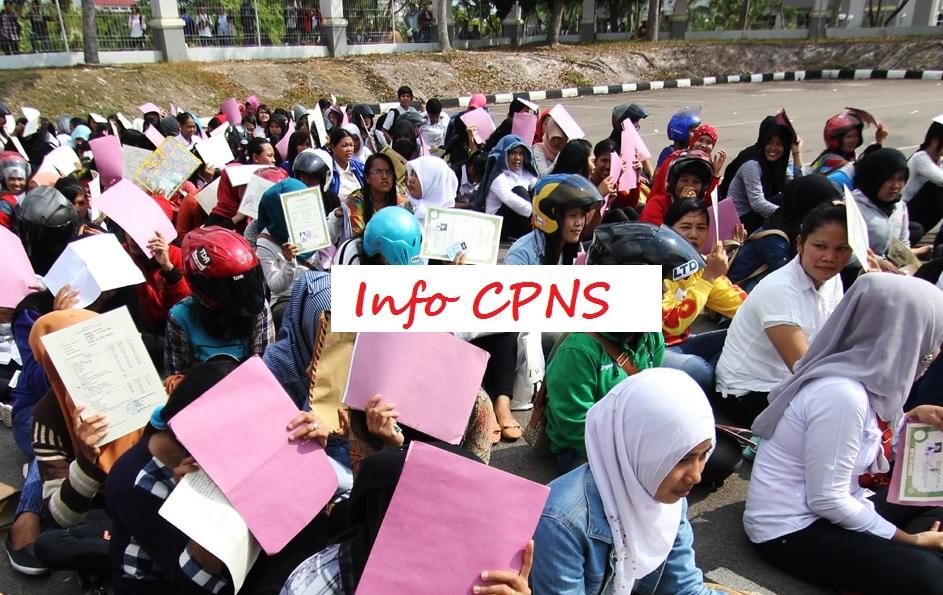Namun apa alasan pemerintah kembali membuka lowongan tersebut  5 Alasan Pendaftaran CPNS 2018 Kembali Dibuka, Lihat Formasinya Disini