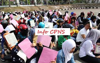 Info cpns terbaru 2019/2020