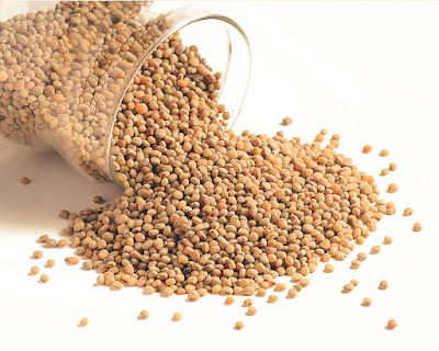 8 Health Benefits Of Sorghum