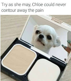 Try as she may, Chloe could never contour away the pain