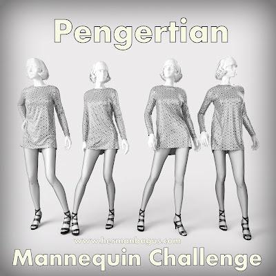 Pengertian Mannequin Challenge Hermanbagus