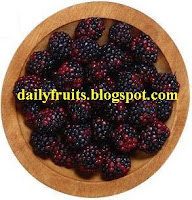 boysenberry health benefits, fruits and health, dailyfruits.blogspot.com