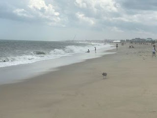 Point Pleasant-Best Budget Beach Vacations from the Northeast