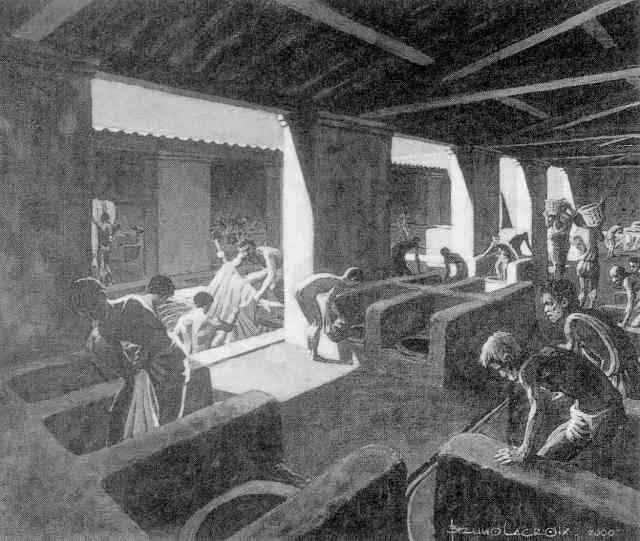 Sustitutivos del jabón: métodos de limpieza en la antigua roma
