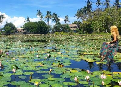 Tempat Wisata Taman Bunga di Bali Yang Populer