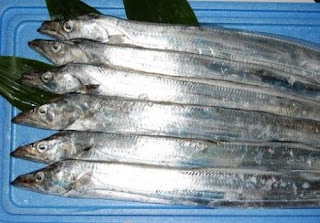 Hải sản Phú Yên - hai san phu yen