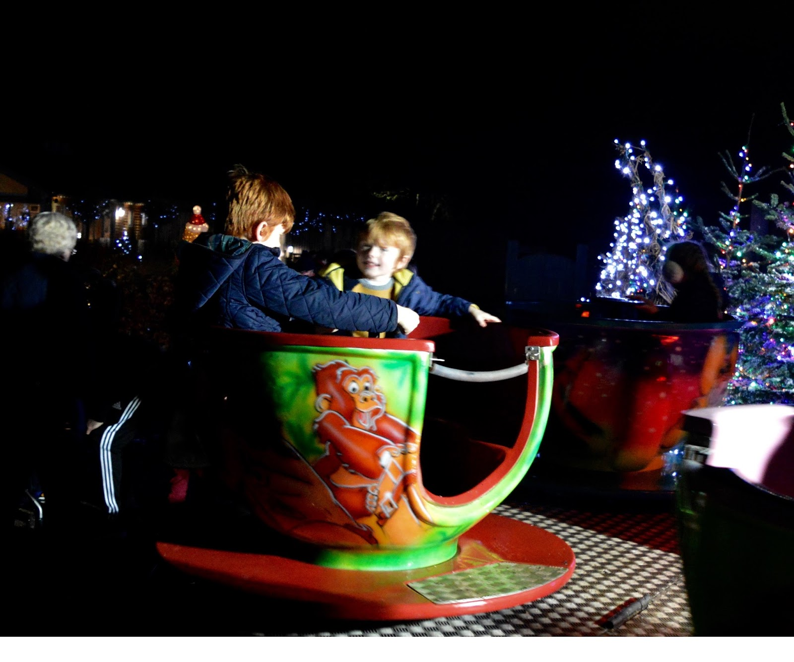 Winter Wonderland Christmas Light Show | A Wynyard Hall Garden Event - A Review - free teacup ride