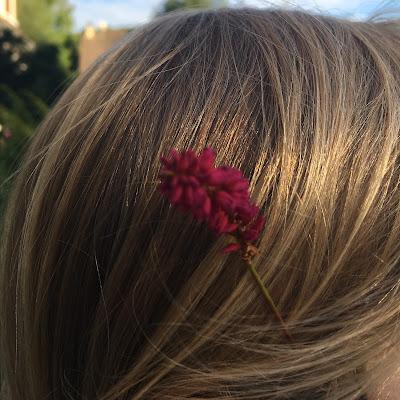 une renouée dans les cheveux d'une fillette