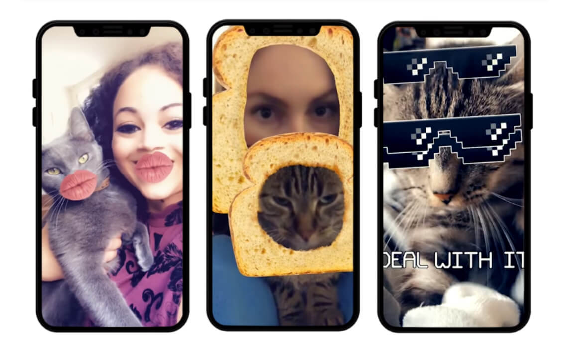 Snapchat Now Has Cat Lenses | New Selfie Filters Meant Specifically For Your Cat