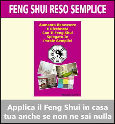 manuale feng shui immagine